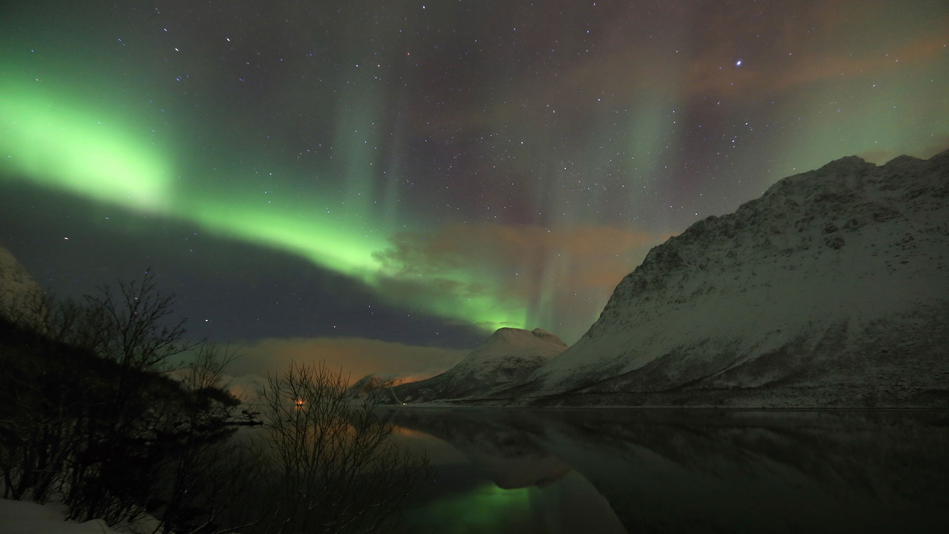 whale watching northern lights in troms 4 days 3 nights nordic visitor. Black Bedroom Furniture Sets. Home Design Ideas